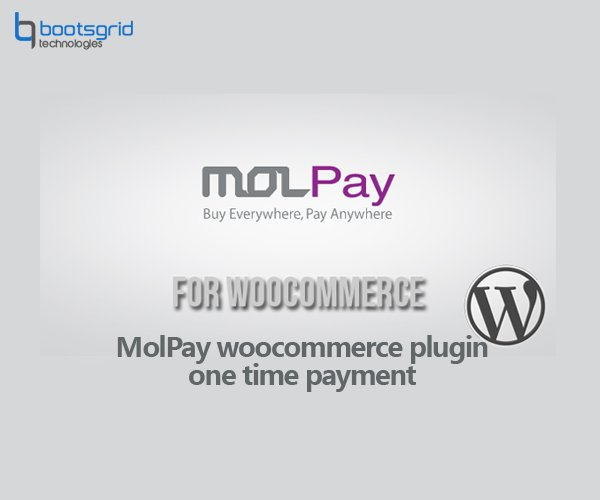 Woocommerce molpay one time payment