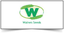 walnes-seeds