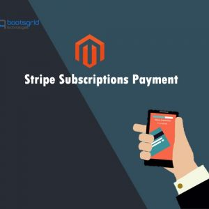 magento-stripe-subscriptions-payment