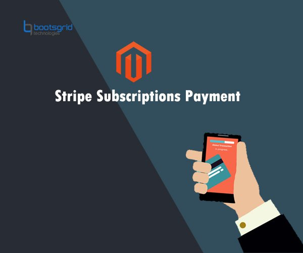 Magento Stripe Subscriptions Payment